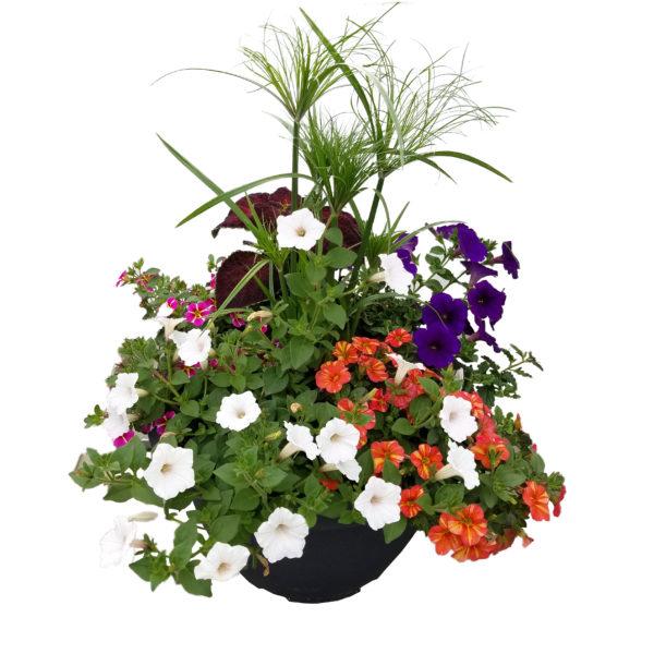 14.5 in Bella Combination Planter