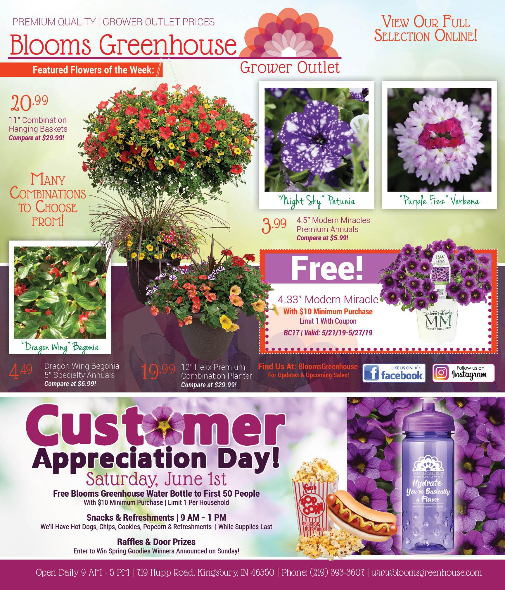 Shop Blooms for Memorial Day Prep