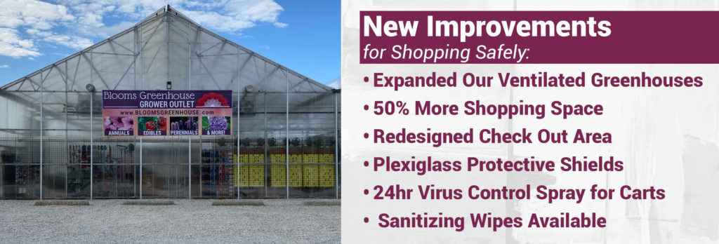 New Improvements for Safer Shopping at Blooms Greenhouse Grower Outlet