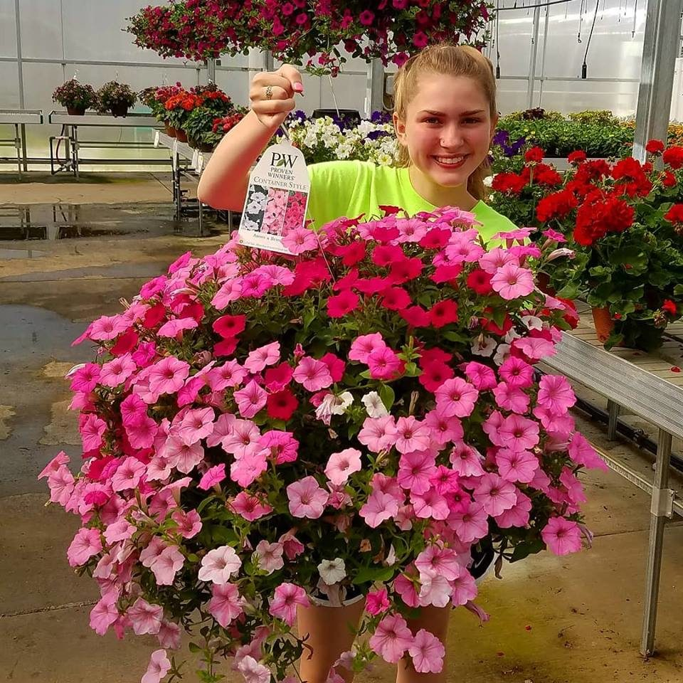 Blooms Greenhouse Staff showcasing a giant Hanging Basket
